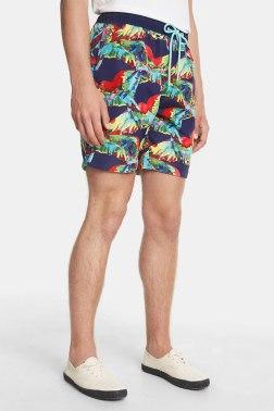 Пляжные шорты Desigual