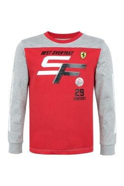 Реглан Ferrari